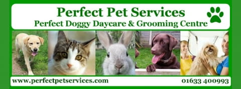 Perfect Pet Services